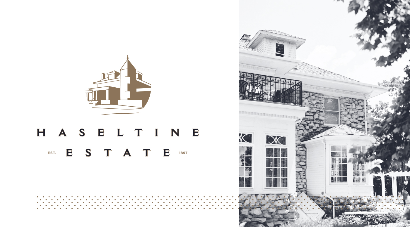 Haseltine-Logo-Image-2