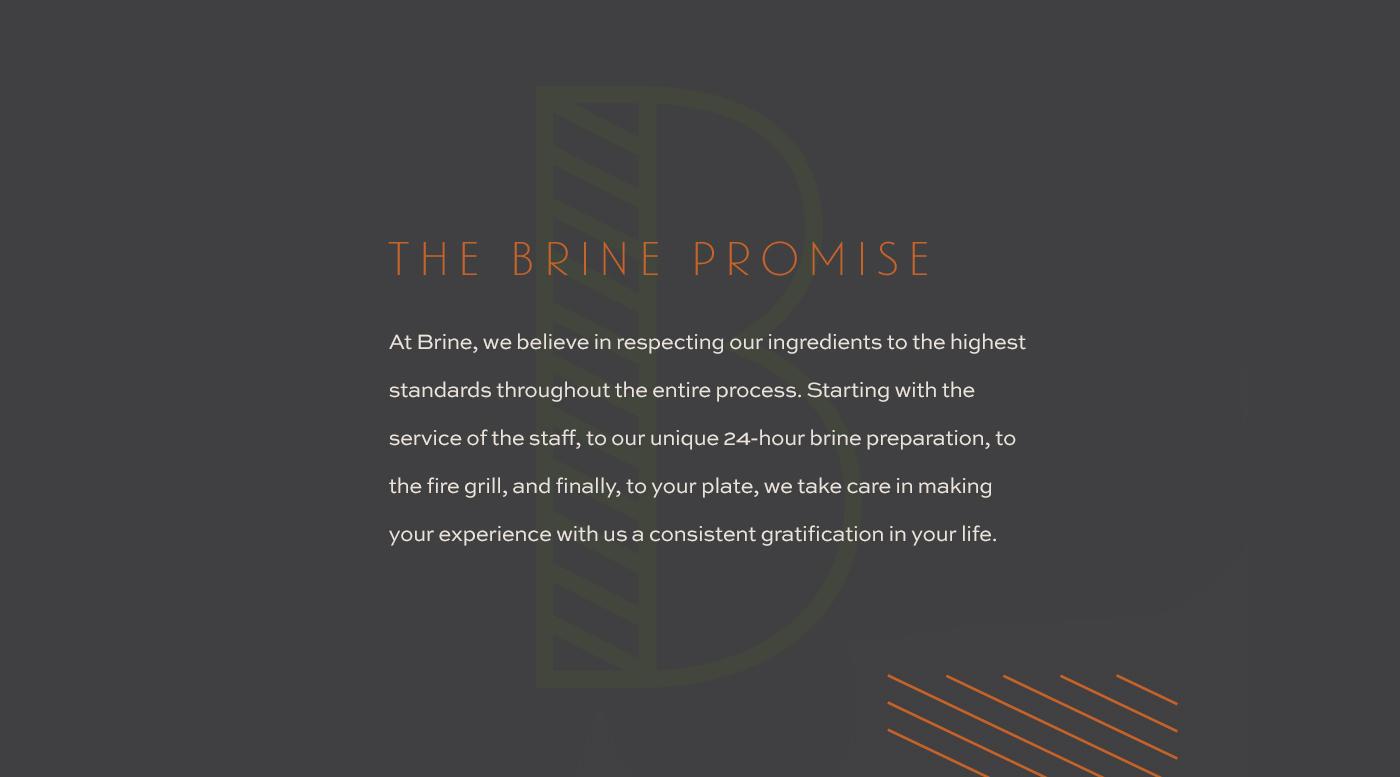 Brine-Promise-2