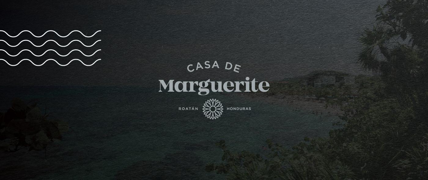 logo-on-background